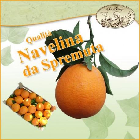 Arance di Ribera - Navelina - Primizia da SPREMUTA